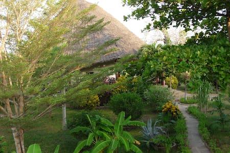 Villa Palms mit Privatpool Diani