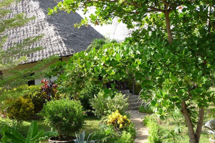 Haus mit 5000 m² tropischen Garten (tropical garden)