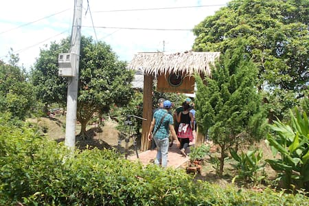 Mekong homestay in Cai Be - tt. Cái Bè