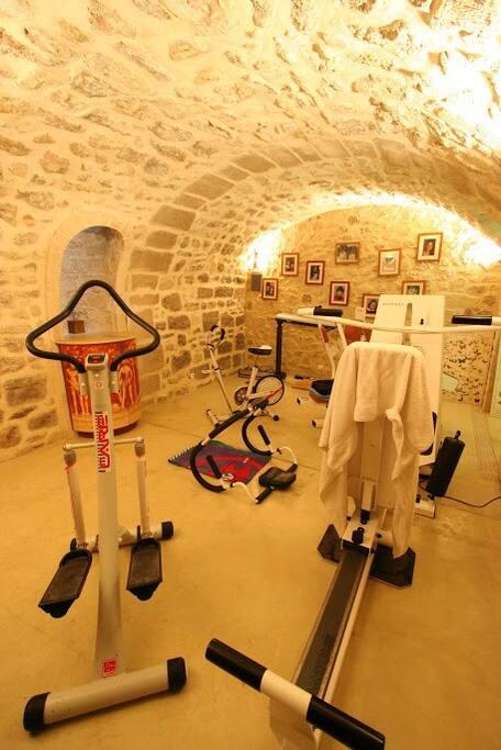 une salle de gymnastique avec des équipements professionnels