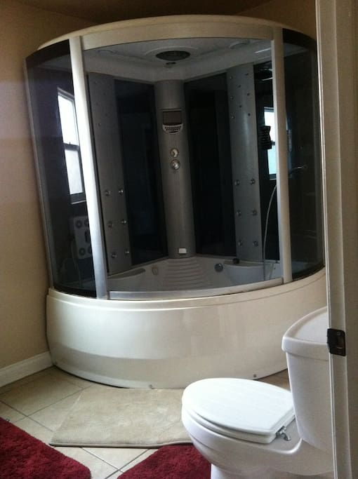 Master Bathroom Jacuzzi Shower/Bub