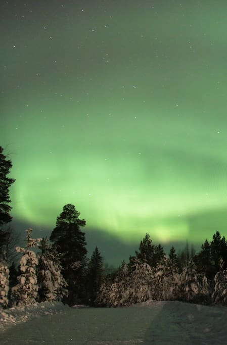 Auroras by the house