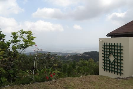 Gorgeous Hill Home Overlooking City - Kingston - Huis