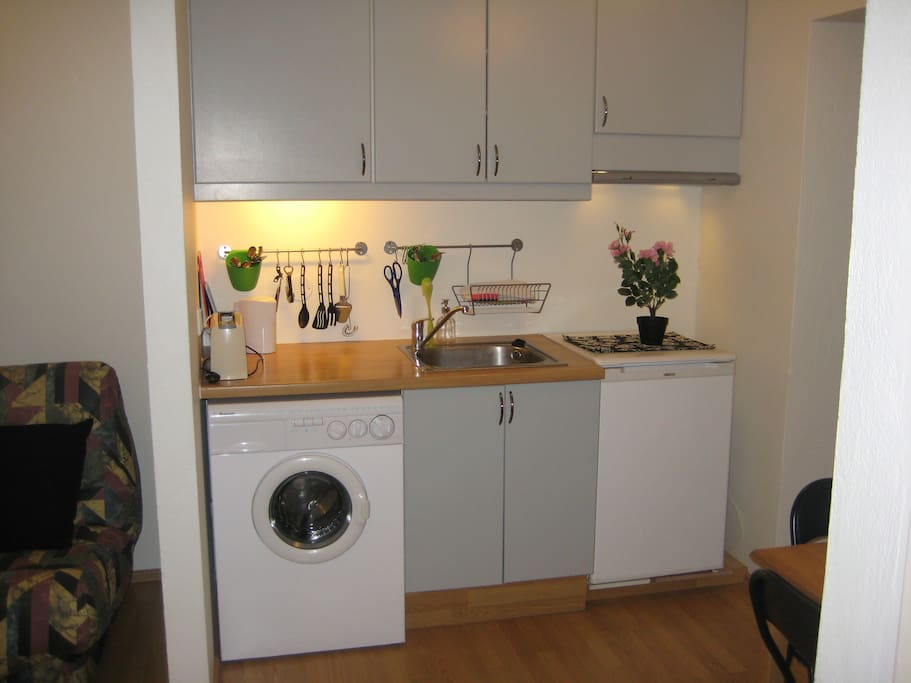Kitchen. Has all necessary amenities, washing machine/dryer, refrigerator, and a double hob cooker.