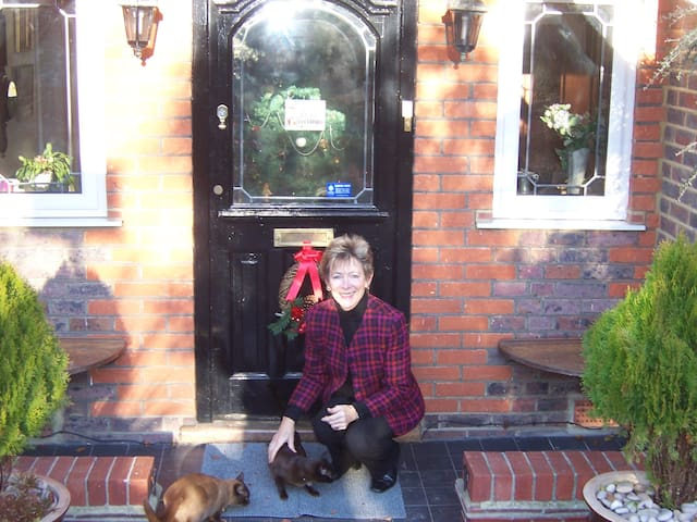 Front Door with our cats