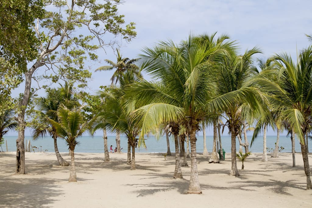 2.500 mts2 de playa exclusiva para disfrutar.