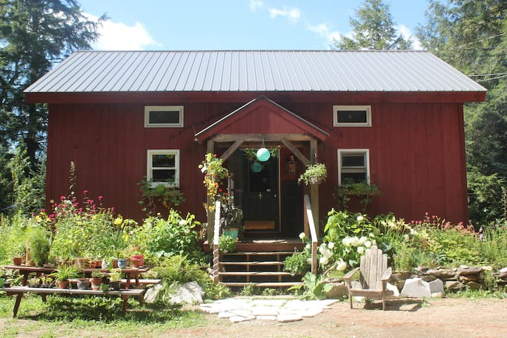 Sherwood Forest Magical Ski House - Londonderry - House
