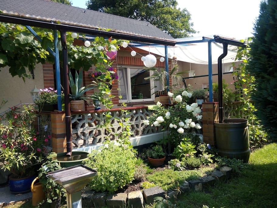 Gartenhaus im spreewald l bbenau bungalows zur miete for Bungalow brandenburg
