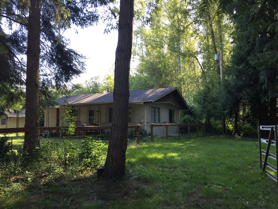 Your entire cabin in the woods is a short walk down the trail to the Nisqually River.