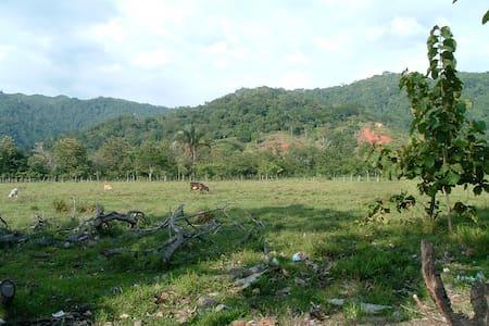 Private Costa Rican Paradise Home - Herradura - House
