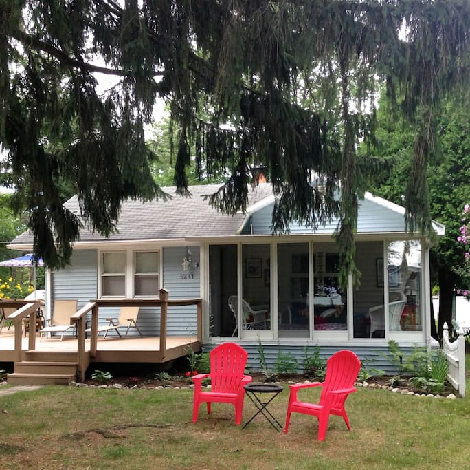 Sandy Feet Cottage sits under an enormous, soaring pine tree!