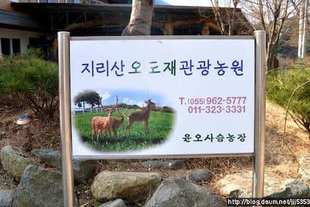 지리산 관광농원 - Macheon-myeon, Hamyang