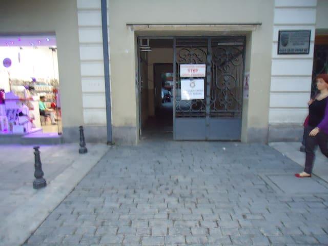kvartira vsentre goroda tbilisi - Tbilisi - Apartemen