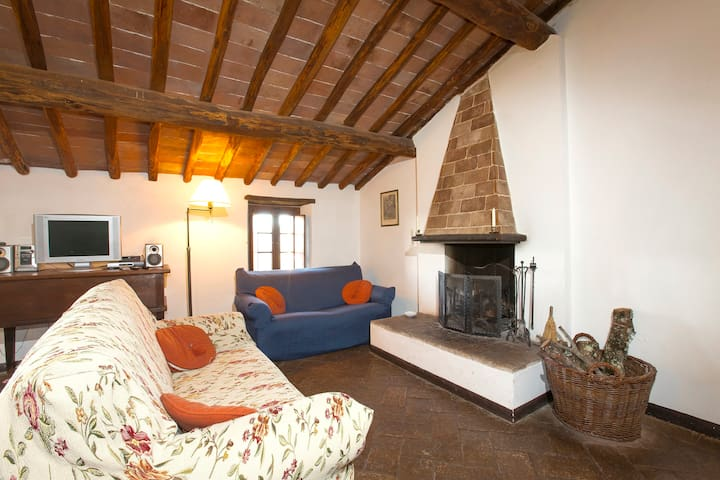 Near Siena, Apartment Salvia, great - Tocchi - Apartamento