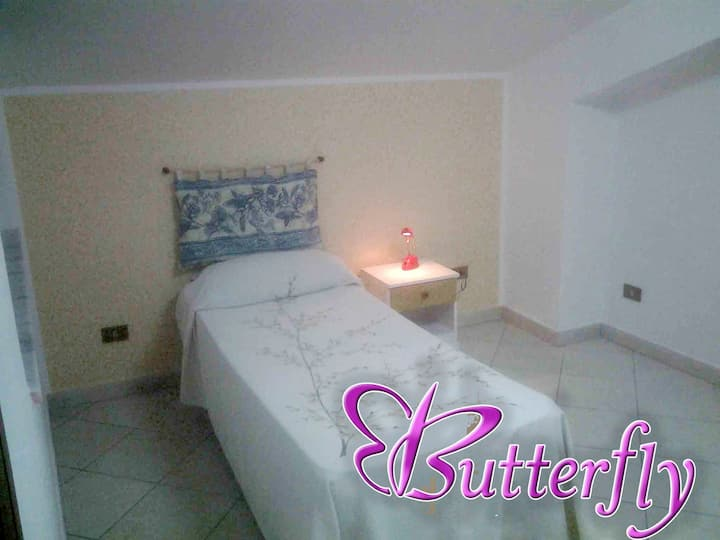 Butterfly Single Room