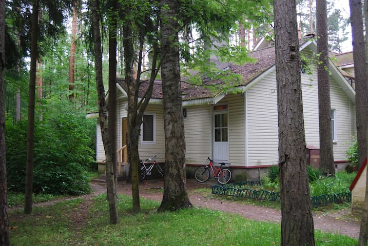 Дом в академгородке в Комарово - Komarovo - Hus