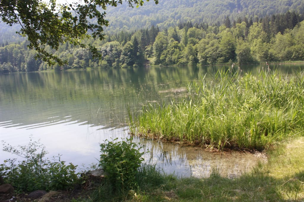 Badestelle am See (Privatstrand)