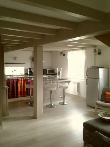 Location BISKARENIA - Bidart - Apartment