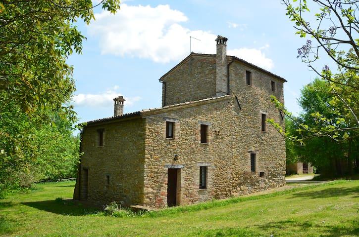 App nel castagneto - Frantoio - Treia