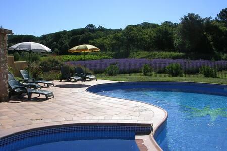 Mûrier dans grand mas avec piscine - Suze-la-Rousse - Rumah