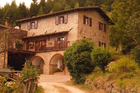 LE PIANACCEAPPARTAMENTO PER VACANZE - Castiglione di Garfagnana - Daire