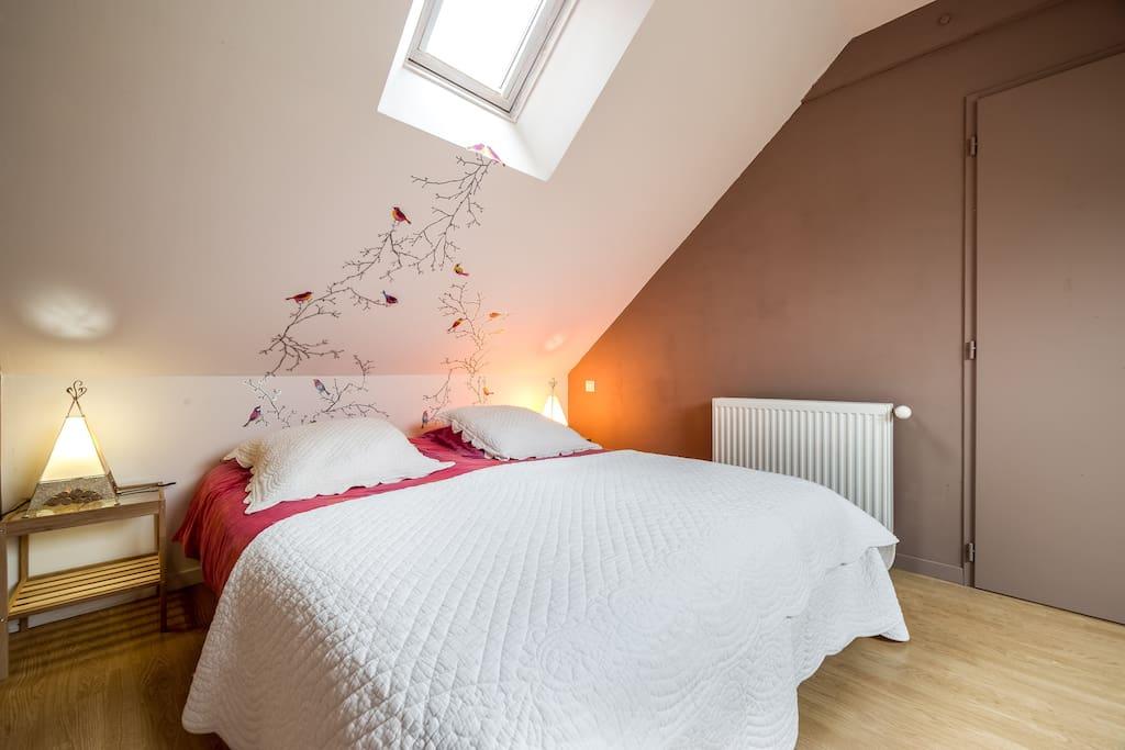 chambre des oiseaux maisons louer vannes bretagne france. Black Bedroom Furniture Sets. Home Design Ideas