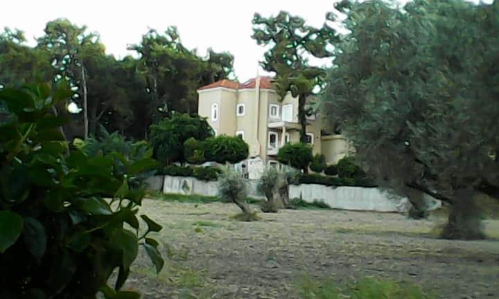 Forest Villa in Rodos