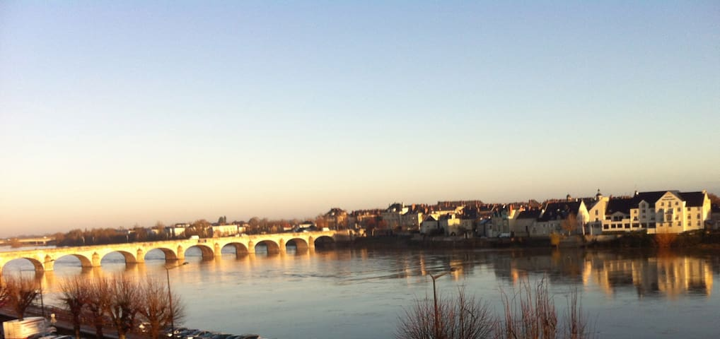beautifull overview on the Loire - Saumur - Apartemen