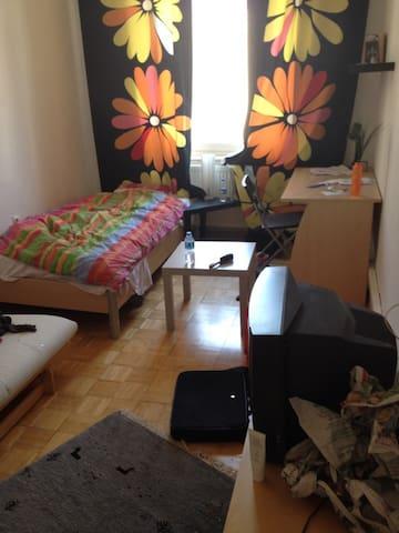 15qm Zimmer am Lokalbf Sachsenhause - Frankfurt nad Menem - Apartament