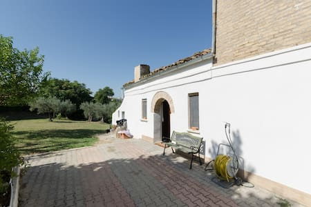 Tranquil BnB amongst olive groves - House