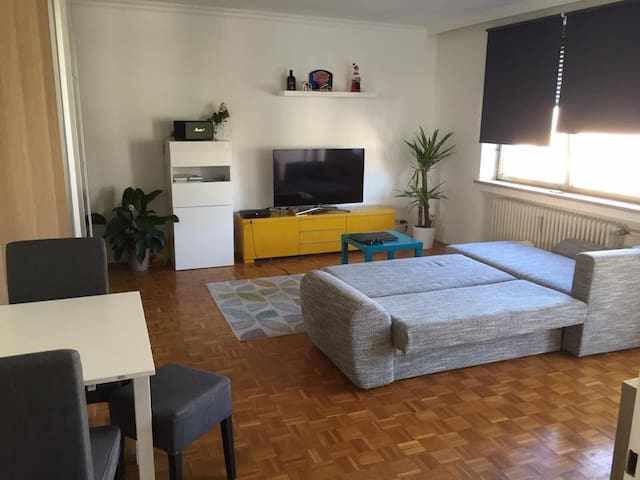 1 Room Apartment Munich Downtown