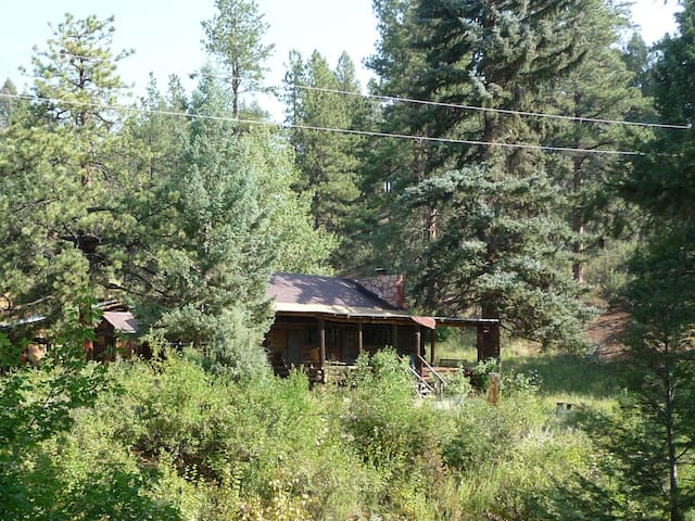 Prospector's cabin in Nat'l Forest - Woodland Park