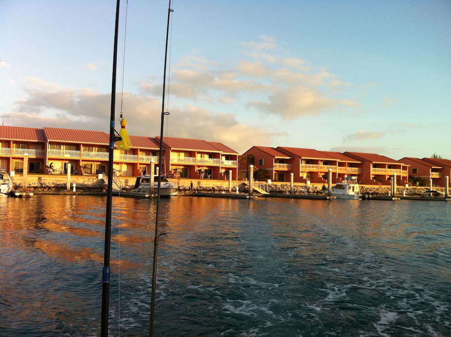 The restaurant and office is on the left of this photo. Get the conch fritters!! They are yummy!