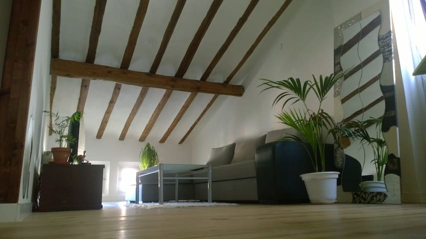 loft con encanto en casco antiguo