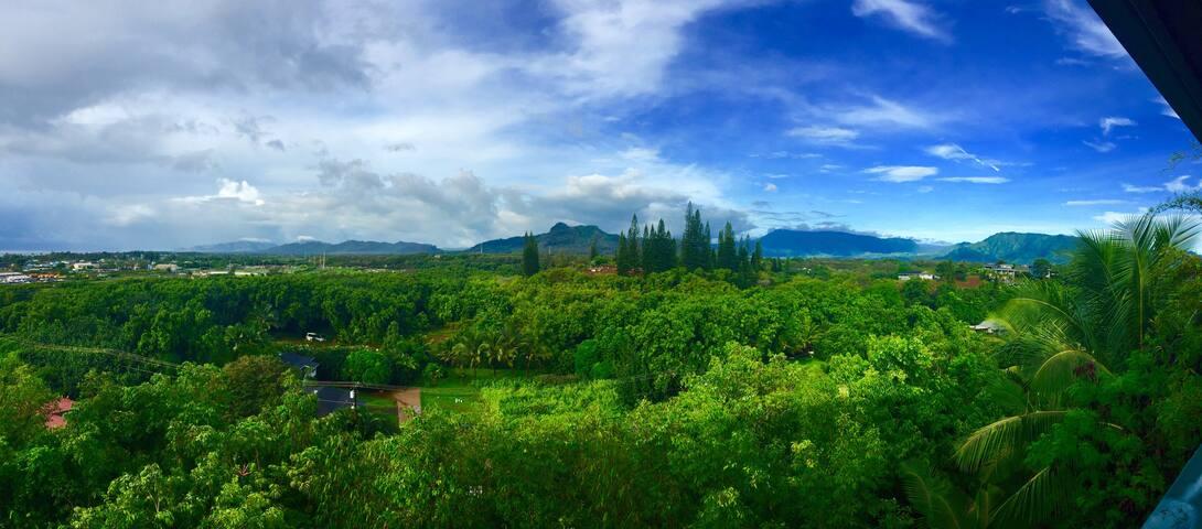 MERMAID HALE/ BRIGHT, COZY 180' Mtn/ Ocean Views - Kapaa - Lägenhet