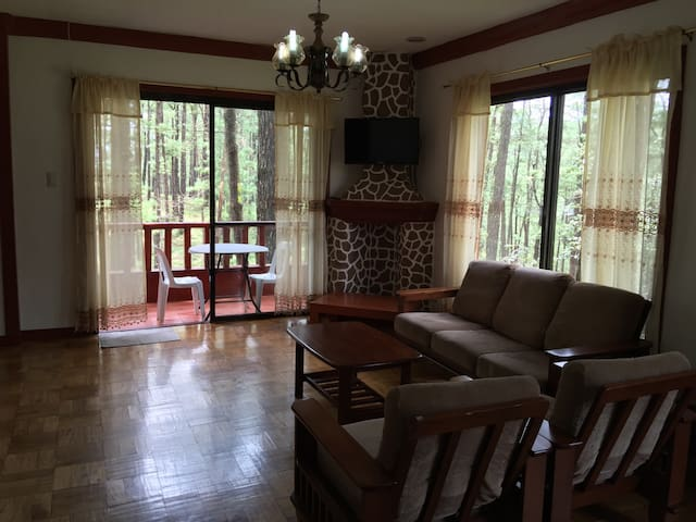 Unit B1, Forest cabin, Camp johnhay