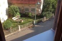 Blick in den Vogelgarten des Nachbarhauses
