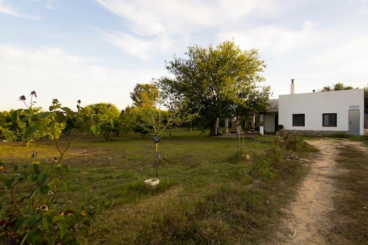 "Finca ""La Ilusion"" - Country house"