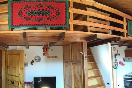 Caratteristica Mansarda in Montagna - Loft