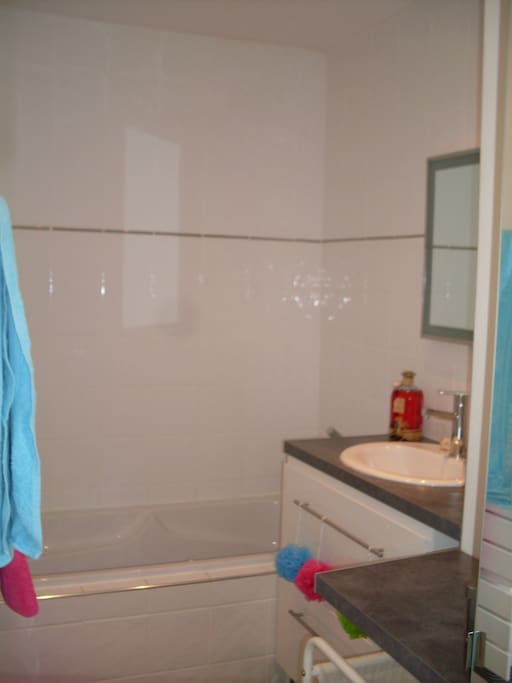 La salle de bain : plan vasque et baignoire...