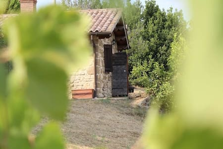 Lovely little lodge with views - Calvi - Cabin