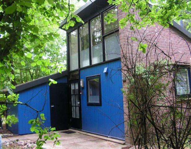 Vakantiehuisje Boomblauwtje - Stegeren - Bungalow