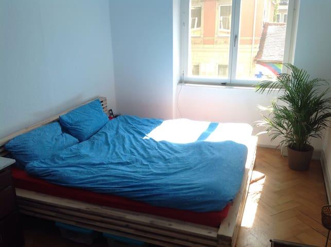Schöne 3 Zimmer Altbauwohnung - Friburgo - Apartamento