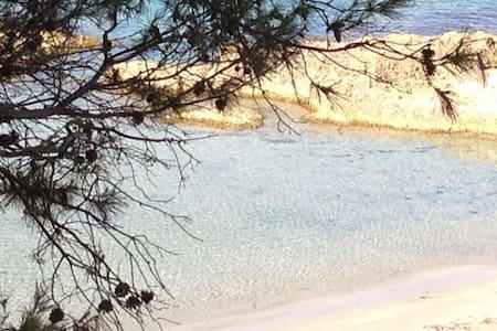 Apartamento salida particular playa - Andratx - Lejlighed