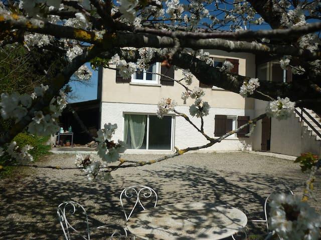 RDC de villa de 55m2 Avec jardin - Beaumont sur leze - Appartement