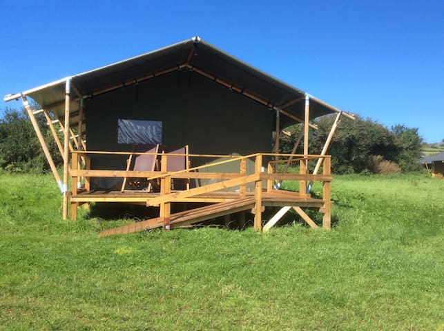 Safari tent with sea views - Madron - Zelt