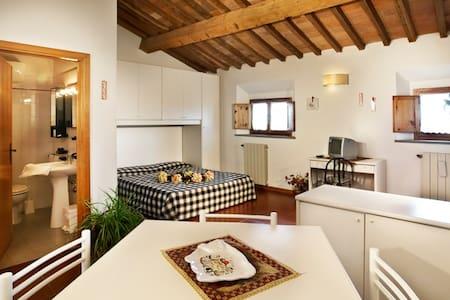 Ospitale appartamento in toscana - La Miniera