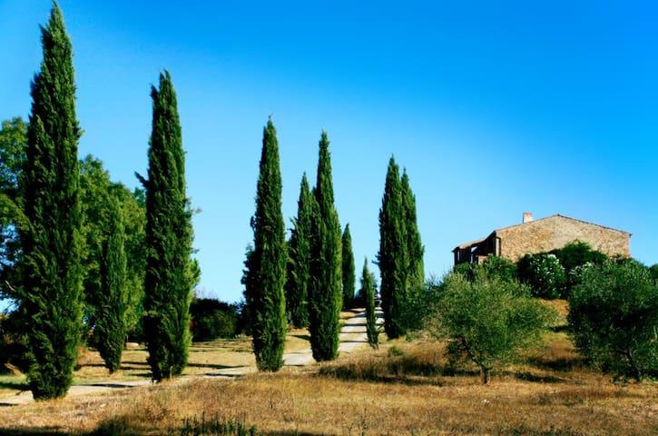 Affittasi Casale in Maremma,Toscana - Campagnatico