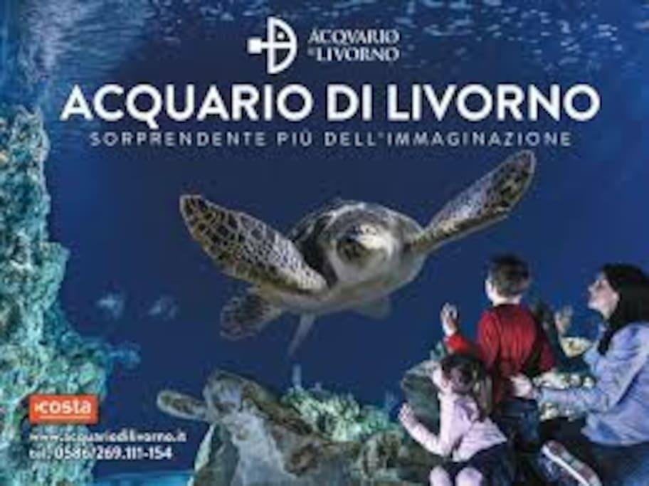 Acquario Livorno presso Terrazza Mascagni
