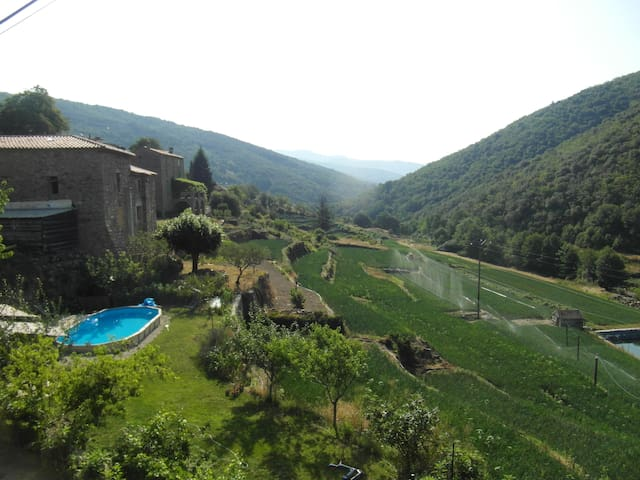 La Reinette de Taleyrac - Valleraugue - Appartement